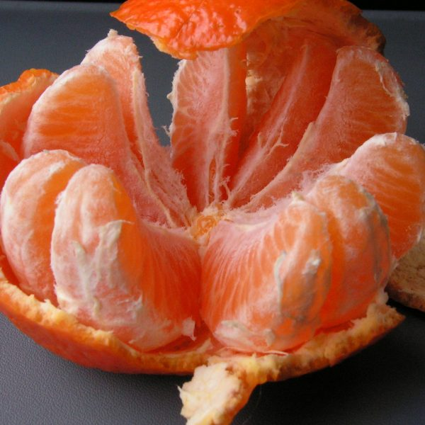 Fruits and fish are natures wonder-foods